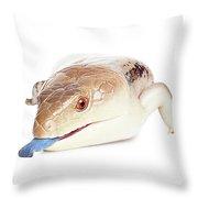 Australian Reptiles On White Throw Pillow