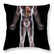The Cardiovascular System Throw Pillow