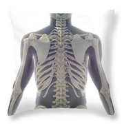 Bones Of The Upper Body Throw Pillow