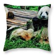 3722-panda -  Acanthus Sl Throw Pillow