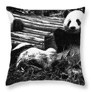 3722-panda -  Advanced Pencil Sketch Throw Pillow
