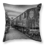 3750 And 3936   7d02530 Throw Pillow