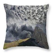 3755 Throw Pillow