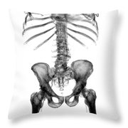 3d Skeletal Reconstruction Throw Pillow