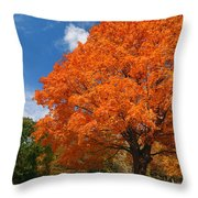 A Blanket Of Fall Colors Throw Pillow
