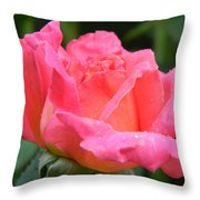 After The Rain Series Throw Pillow
