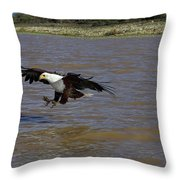 Aigle Pecheur Dafrique Haliaeetus Throw Pillow