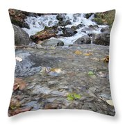 Alaskan Waterfall Throw Pillow