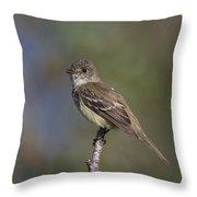 Alder Flycatcher Throw Pillow