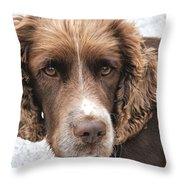 Alfi Our Dog Throw Pillow