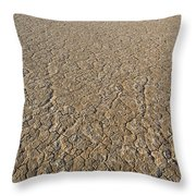 Alvord Desert, Oregon Throw Pillow