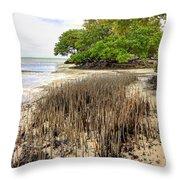 Anne's Beach-2 Throw Pillow