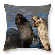 Antarctic Fur Seals Throw Pillow