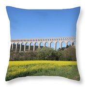 Aqueduct Roquefavour Throw Pillow