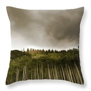 Aspen Trees In Vail Throw Pillow