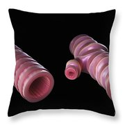 Asthmatic Bronchiole Throw Pillow