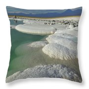 Atacama Salt Lake Near San Pedro De Throw Pillow