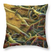 Athletes Foot Fungus Throw Pillow