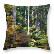 Autumn 8 Throw Pillow