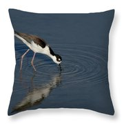 Black Necked Stilt Throw Pillow