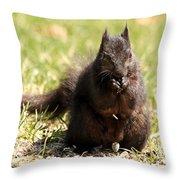 Black Squirrel Throw Pillow