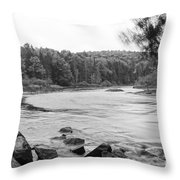 Bog River Throw Pillow