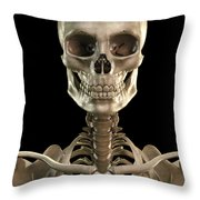 Bones Of The Head And Upper Thorax Throw Pillow