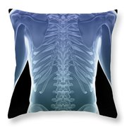 Bones Of The Torso Throw Pillow