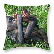 Bonobo Baby Throw Pillow
