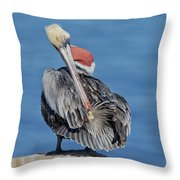 Brown Pelican Preening Throw Pillow