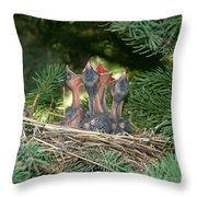 Cedar Waxwings Throw Pillow by Linda Freshwaters Arndt