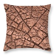 Cracked Dry Clay Throw Pillow