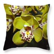 Cymbidium Orchid Throw Pillow