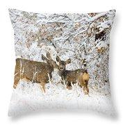 Doe Mule Deer In Snow Throw Pillow