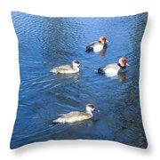 4 Duck Pond Throw Pillow