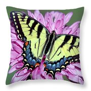 Eastern Tiger Swallowtail Butterfly Throw Pillow