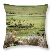 Environmental Tierra Del Fuego -- Throw Pillow
