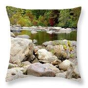 Fall Along Cherry River Throw Pillow