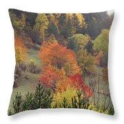 Fall Colours Throw Pillow