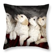 Festive Puppies Throw Pillow