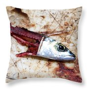 Fish Bait Throw Pillow