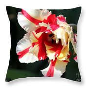 Flaming Parrot Tulip Throw Pillow