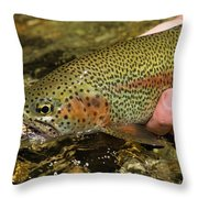 Fly Fishing Patagonia, Argentina Throw Pillow