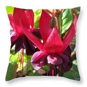Fuchsia Named Roesse Blacky Throw Pillow