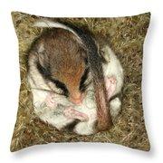 Garden Dormouse Throw Pillow
