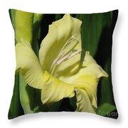 Gladiolus Named Nova Lux Throw Pillow