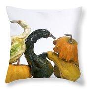 Gourds And Pumpkins Throw Pillow