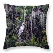 Heron Colors Throw Pillow