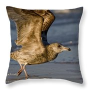 Gull Throw Pillow