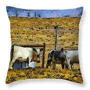 Hey Look At The Stupid Tourist Throw Pillow